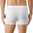 Calida New Boxer Activity Cotton